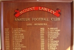 An example of a honour board we can manufacture to specification or update as required. Image 6